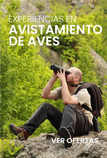 Promociones viajesarauca.com